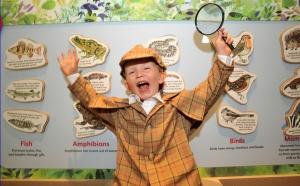 Garden Detectives Exhibition